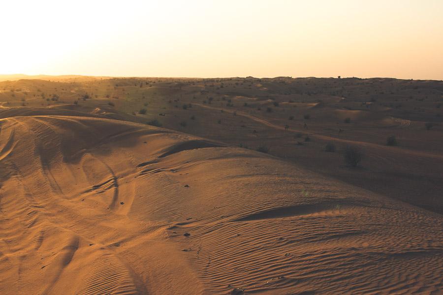 dubai-desert-01