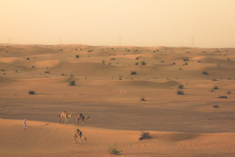 dubai-desert-05